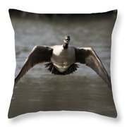 Goose In Flight Throw Pillow