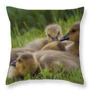 Goslings Throw Pillow