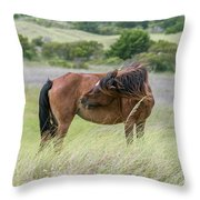 Gotta Scratch Throw Pillow