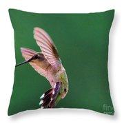 Grace Of A Hummingbird Throw Pillow