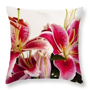 Graceful Lily Series 10 Throw Pillow