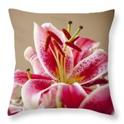 Graceful Lily Series 14 Throw Pillow