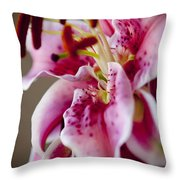 Graceful Lily Series 17 Throw Pillow