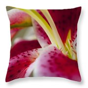 Graceful Lily Series 18 Throw Pillow