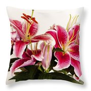 Graceful Lily Series 9 Throw Pillow