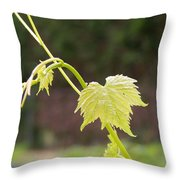 Grapevine Throw Pillow