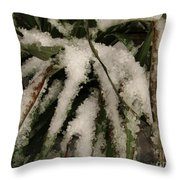 Grass In Snow 2 Throw Pillow