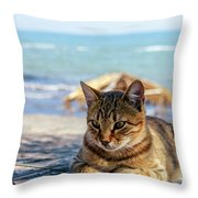 Gray Cat On The Background Of The Sea 1 Throw Pillow