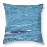 Gray Whale Throw Pillow
