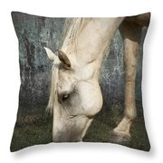 Grazing Throw Pillow by Betty LaRue