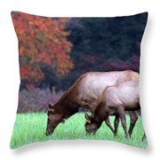 Grazing Together Throw Pillow