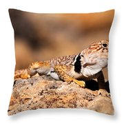 Great Basin Collared Lizard Throw Pillow
