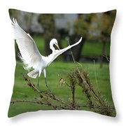 Great Egret Prepared For Landing Throw Pillow