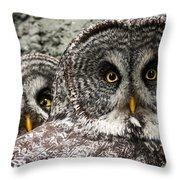 Great Grey Wake Up Throw Pillow