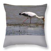 Great Rift Birds Throw Pillow