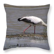 Great Rift Birds Throw Pillow