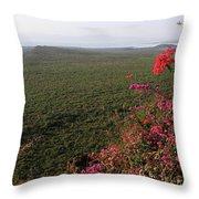 Great Rift Valley Ethiopia Throw Pillow