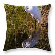 Great White Egret Throw Pillow