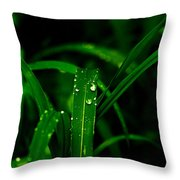 Green Grass  Throw Pillow