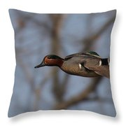 Green-winged Teal Flies Over Throw Pillow