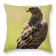 Greeting Dawn Throw Pillow