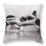 Group Of Ducks Throw Pillow
