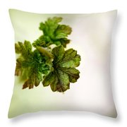Growing Red Currant Throw Pillow