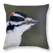 Hairy Woodpecker Male Throw Pillow