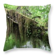 Hall Of Mosses - Hoh Rain Forest Olympic National Park Wa Usa Throw Pillow