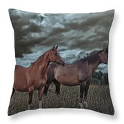 Hanoverians Throw Pillow