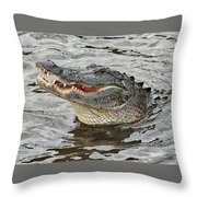 Happy Florida Gator Throw Pillow