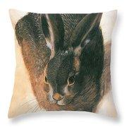 Hare 1528  Throw Pillow