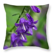 Harebells 2n Throw Pillow