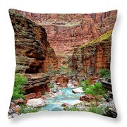 Havasu Throw Pillow