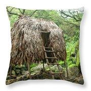 Hawaiian Hale Throw Pillow