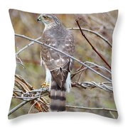 Hawk Eye 3 Throw Pillow