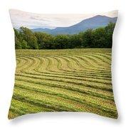 Hayfield Landscape Throw Pillow