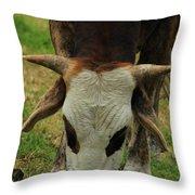 Head Of A Bull Throw Pillow