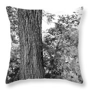 Heaven's Tree Throw Pillow