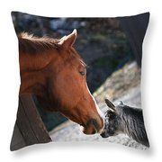 Hello Friend Throw Pillow