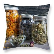 Herbs In Jars Throw Pillow