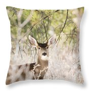 Herd Of Mule Deer In Deep Snow Throw Pillow