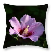 Hibiscus Light Throw Pillow
