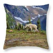 Hidden Landscape In Widescape Throw Pillow