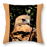 Hiding In The Trees Throw Pillow