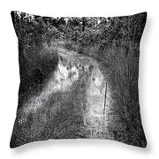 Hiking Trail  Throw Pillow by Rudy Umans