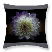 Hint Of Lilac Throw Pillow