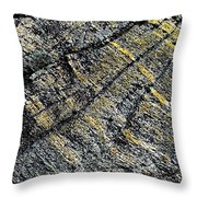 History Of Earth 5 Throw Pillow