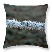 Hoar Frost At Sun Up Throw Pillow
