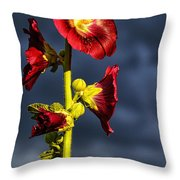 Hollyhock And Storm Clouds Throw Pillow